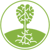 Insight Health Icon
